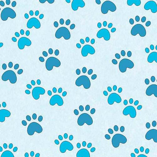 Miss Kitty's Colors Paw Prints Blue