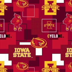 College Blocks Iowa State University