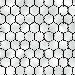 Barnyard Boogie Chicken Wire White