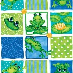 Froggin' Around Squares