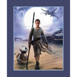Star Wars Force Awakens Rey Panel