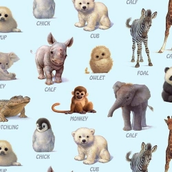 Animal Friends Exotic Animal Baby Names Blue