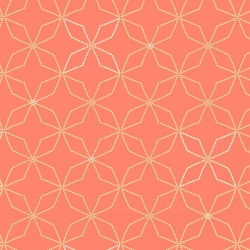Fresh & Fab Kaleidoscope Salmon