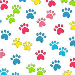 Miss Kitty's Colors Paw Prints Multi