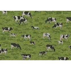 Farm Grazing Cows
