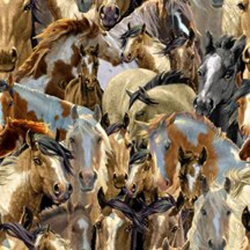 Mustang Meadows Collage of Horses