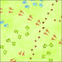 Hide and Seek Animal Tracks on Grass Green